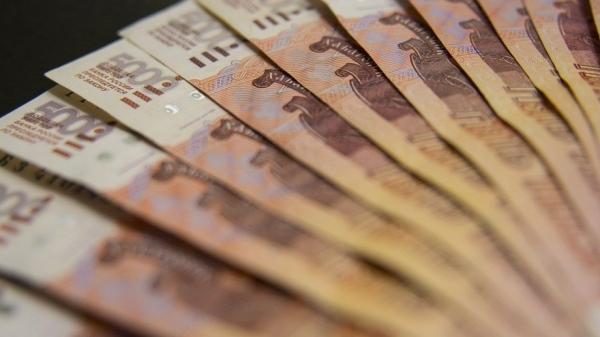 Птичий рынок в Воронеже хотят продать за 52 млн рублей