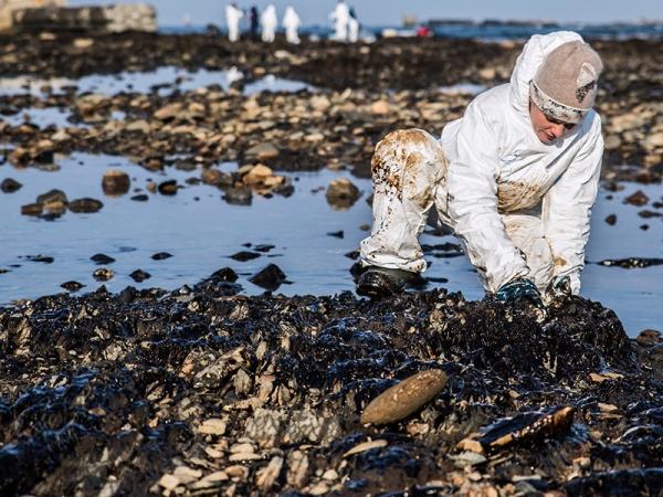Загрязненные миллиарды: ущерб природе России от нефтепродуктов за год увеличился в пять раз