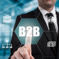 B2B портал: разработка под ключ